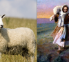 FIVE MIN. POWER MESSAGE #31: Is He Your Good Shepherd, Yet? 3-19-17